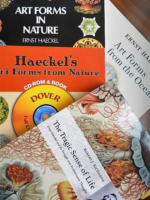 Ocean Creature Books