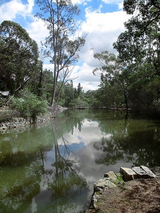 John Forrest National Park, Near Perth.