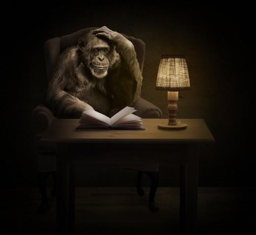 """Monkey See---Monkey Do"""