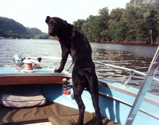 India on a fishing trip.