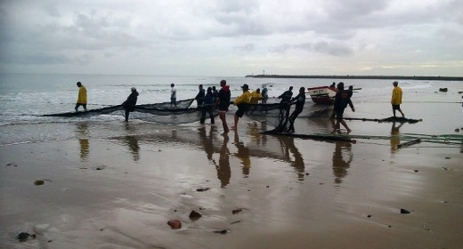 Early morning net-fishing, Durban, KwaZulu-Natal, South Africa