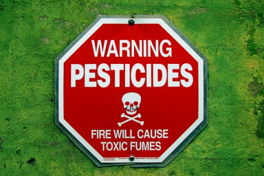 Know your pesticides before you use it in and around your home.