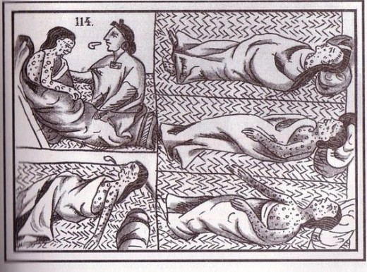Smallpox and measles devastated the native american populations in the 16th and 17th Century