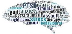 PTSD Post Traumatic Stress Disorder Key Diagnosis