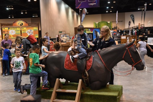 Horse Discovery Zone