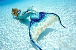 Mermaid Sightings in the World
