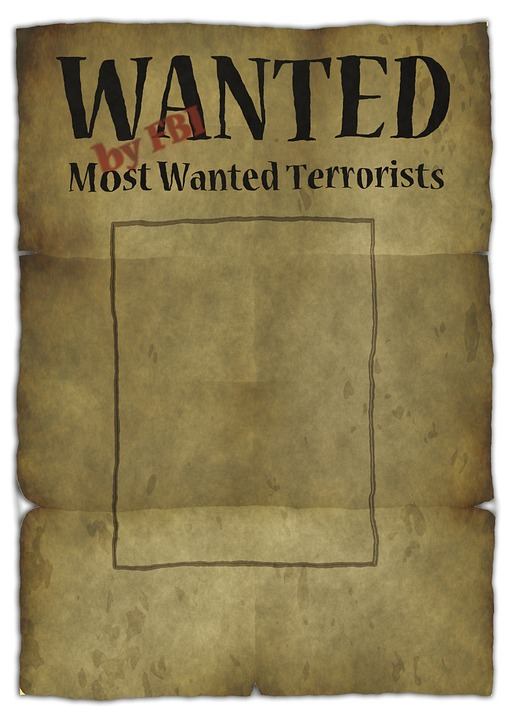 Wanted-more things!