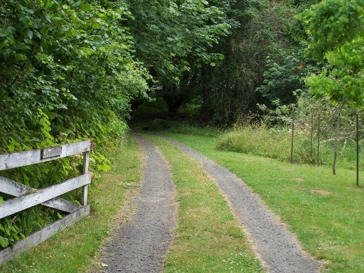 How do you walk down the path of a freelance writer?  Put one foot in front of the other.