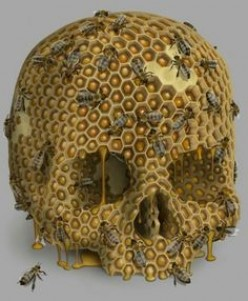 The Abundance of Clusters Trigger : HONEYCOMBS