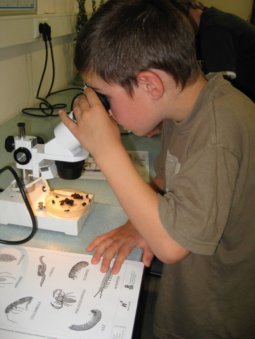 Encourage a love of science with science chapter books