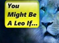 You Might Be a Leo If...