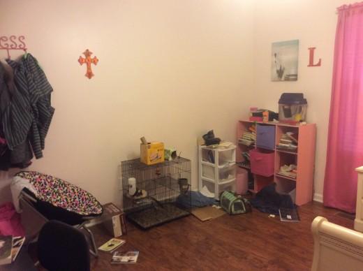 My Room... I'm Like, Really Messy...