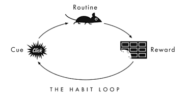 Example of a habit loop