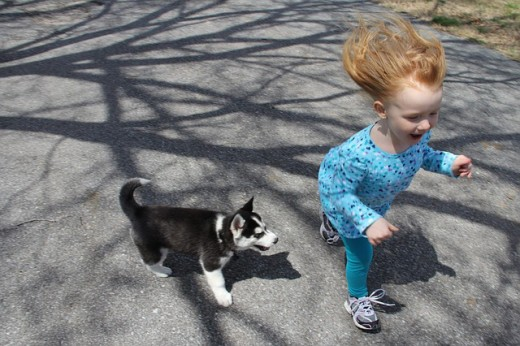 Puppy and a child enjoy running a race together.