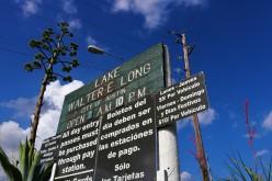 Walter E. Long Metropolitan Park & Lake Austin TX- Fishing Spots & Boating Reviews
