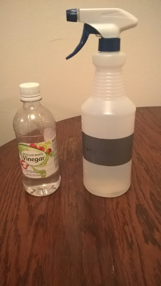 You can mix vinegar and water in a spray bottle to clean your leopard gecko's tank.