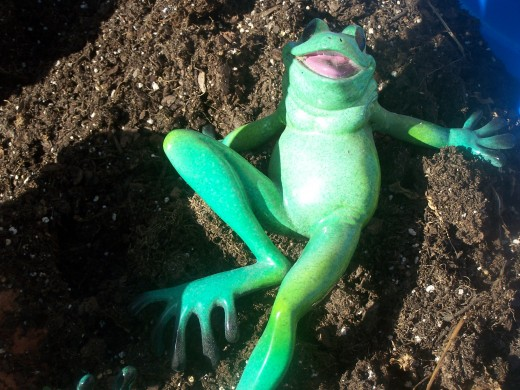 Actually I am quite successful in my control of all pronunciation and of the English language..ribbit..
