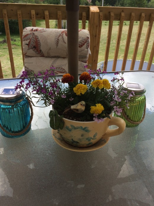 Large teacup, flowers for the patio table. Marigolds and lobelia.