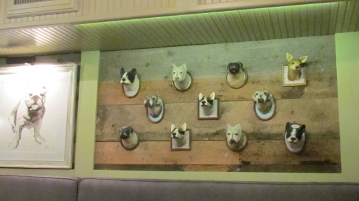 "Figures of a variety of dogs on the wall within the ""White Dog Café"" where my husband and I  had dinner after I served as a volunteer during the NFL Draft."