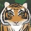 KateGris profile image