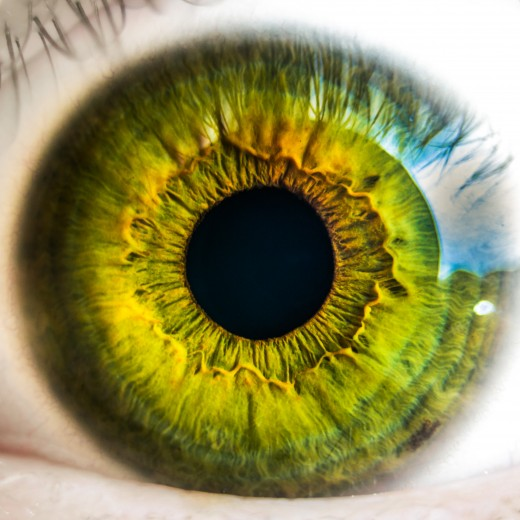 Eyes, vision...are important to the writer. Take care of them!