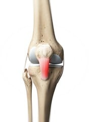 Joint pain must be near bones
