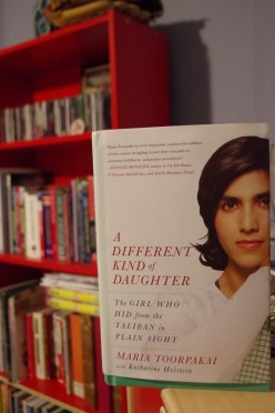 Book Review - A Different Kind of Daughter by Maria Toorpakai and why I love the region she comes from