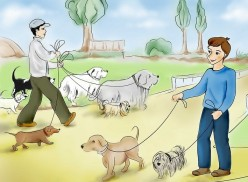 How to Start a Pet Sitting or Dog Walking Business