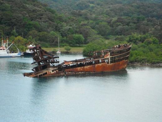 Sunken Ship As An Artificial Coral Reef