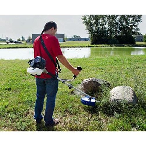 The Blue Max 52623 Extreme Duty 2-Cycle Dual Line Trimmer and Brush Cutter is essentially two tools in one.  You can use it as a string trimmer to trim and edge the grass, then switch the head to a blade to deal with tougher areas with thick brush.