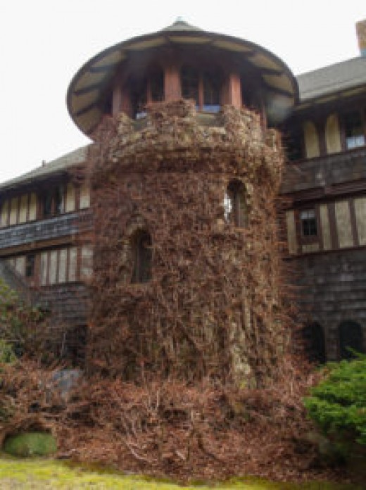 Stone Tower from Glidden House