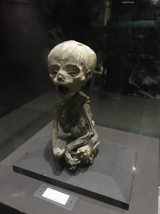 Smallest Mummy in the World
