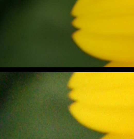 Pushing up your ISO too much will result in graininess, which can sometimes be distracting in a photograph.