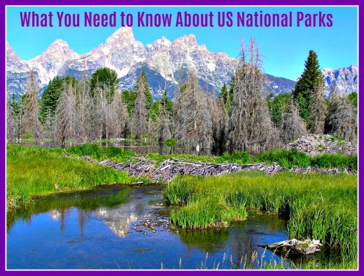 An overview of the United States park system.