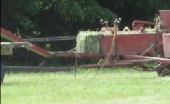 Minnesota Musing: Bales of Hay from my Grassy Field - Food for my Neighbor's Horses