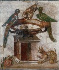 Why Are Cats Almost Sacred In Rome?