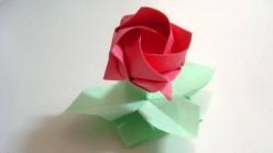Rose of Mâché