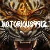 notorious9912 profile image