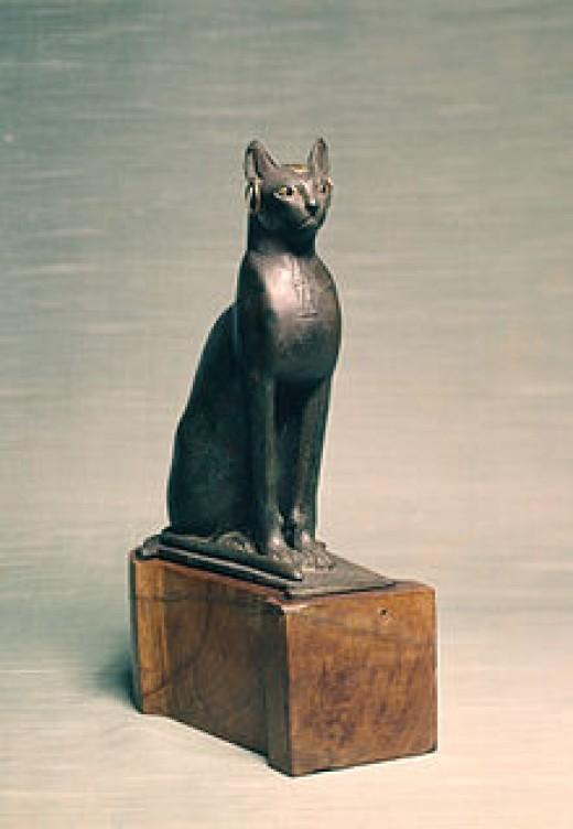 Egyptian cat and Alcheny