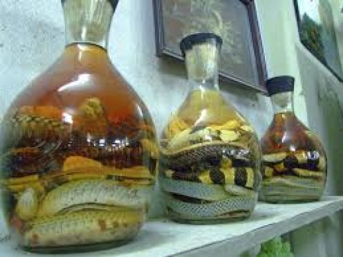 Filipinos drink snake wine and it is very popular among the majority of the population.