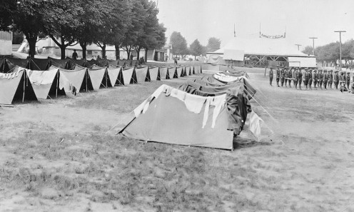 Pup Tents at Camp Crane, Pennsylvania.