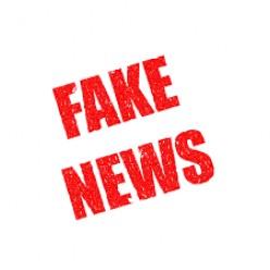 What do Fake news Do?