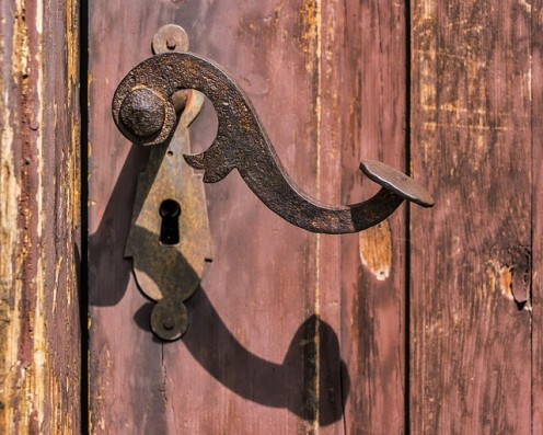 The Back Door
