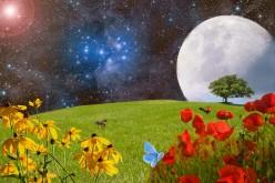 Destiny Written in Stars: a Poem
