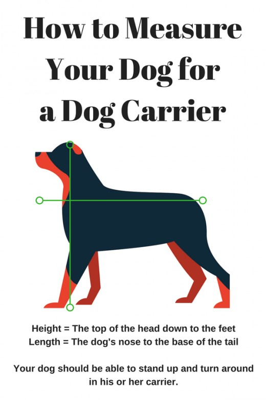 It's important to know your dog's height and length to choose the correct size dog carrier.