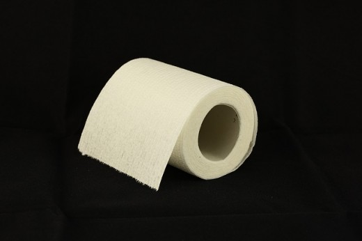 Above is a photo of a standard role of toilet paper.