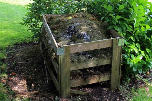 The compost pile is an essential nutritional source for both flower and vegetable gardens. The soil needs to be fed with aged compost.