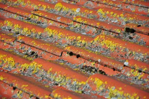 Damaged roof tiles.