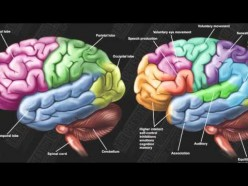 Neuroethics: Brain Privacy