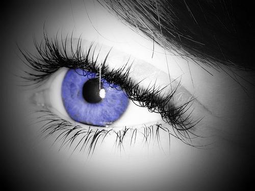 Eyelashes frame the eyes
